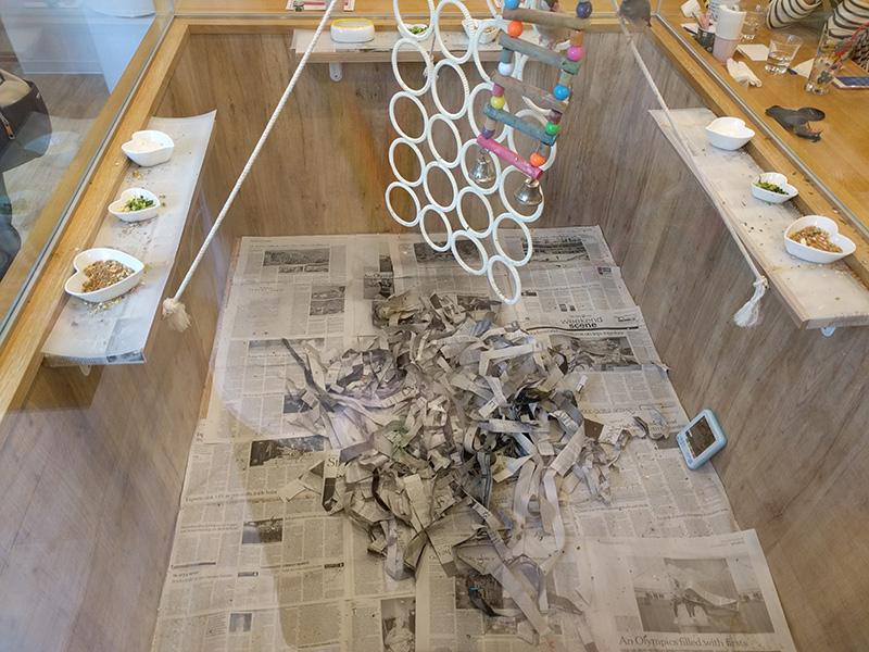 KOTORI CAFE-鳥室一隅